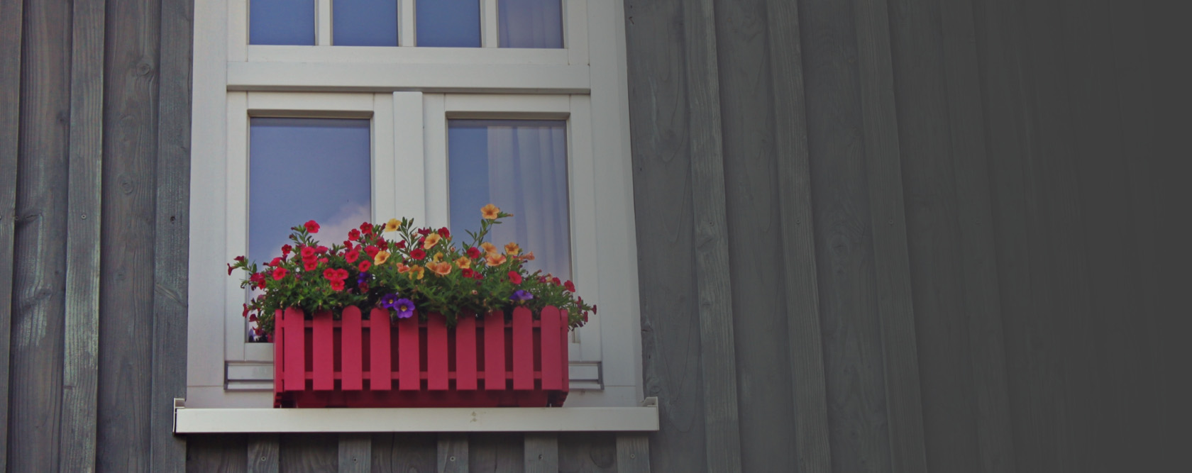 House window with pink wooden box of flowers.
